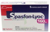 SPASFON LYOC 160 mg, lyophilisat oral à Hourtin