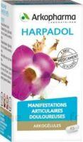 ARKOGELULES HARPAGOPHYTON, 150 gélules à Hourtin