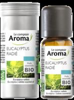 HUILE ESSENTIELLE BIO Eucalyptus Radié à Hourtin