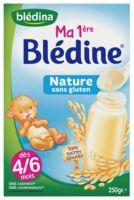 Blédine Ma 1ère blédine nature 250g à Hourtin