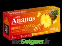 MILICAL ANANAS BRULEUR DE GRAISSE à Hourtin
