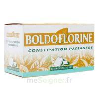 BOLDOFLORINE, mélange de plantes pour tisane en sachet-dose à Hourtin