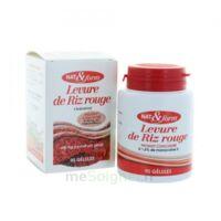 NAT&FORM EXPERT Levure de riz rouge Gélules B/90 à Hourtin