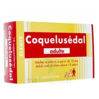 COQUELUSEDAL ADULTES, suppositoire à Hourtin