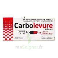 CARBOLEVURE Gélules adulte Plq/30 à Hourtin